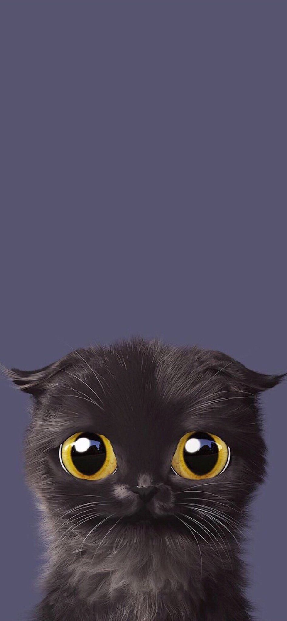 The Iphone X Wallpaper Thread Iphone Ipad Ipod Forums At Imore Com Cute Cat Wallpaper Cat Wallpaper Animal Wallpaper