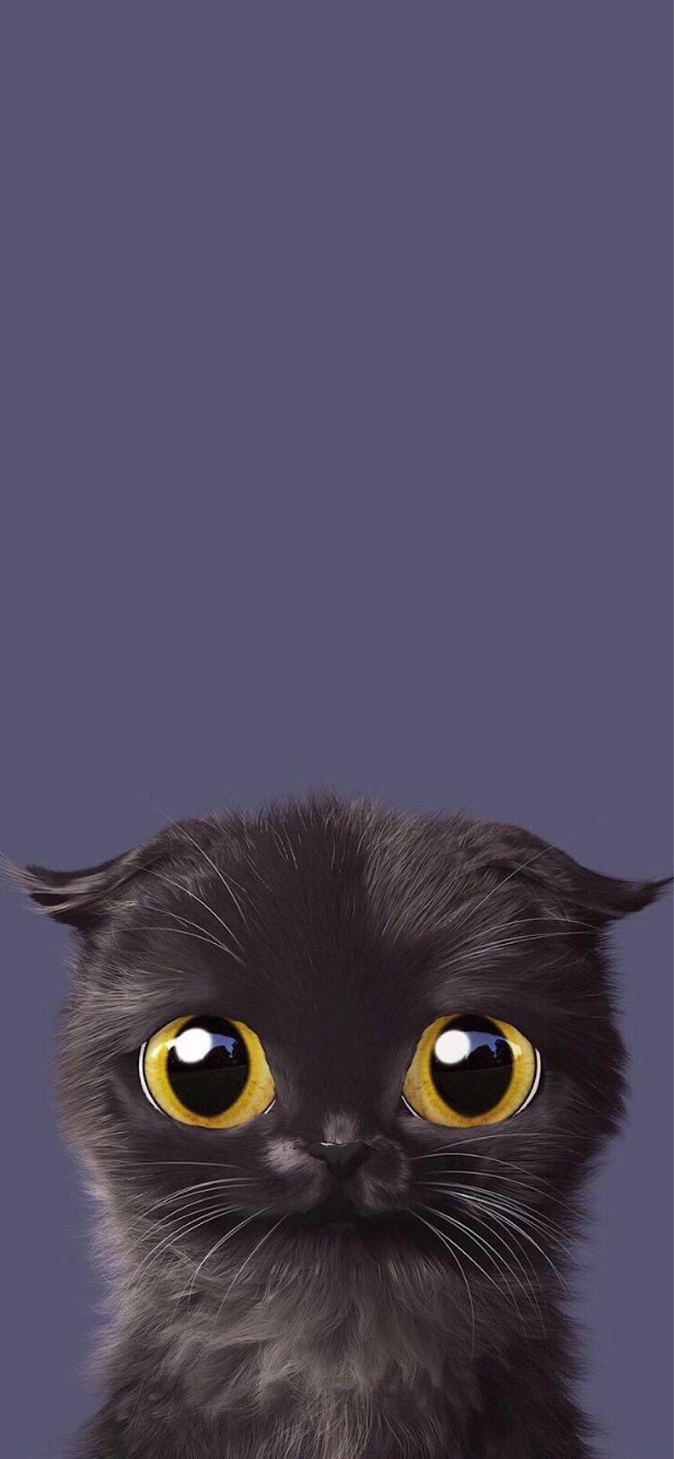 The Iphone X Wallpaper Thread Iphone Ipad Ipod Forums At Imore Com Cat Wallpaper Cute Cat Wallpaper Animal Wallpaper