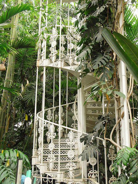 b67e7419d90c0eaa730e558f7392feda - Palm House Kew Gardens London England