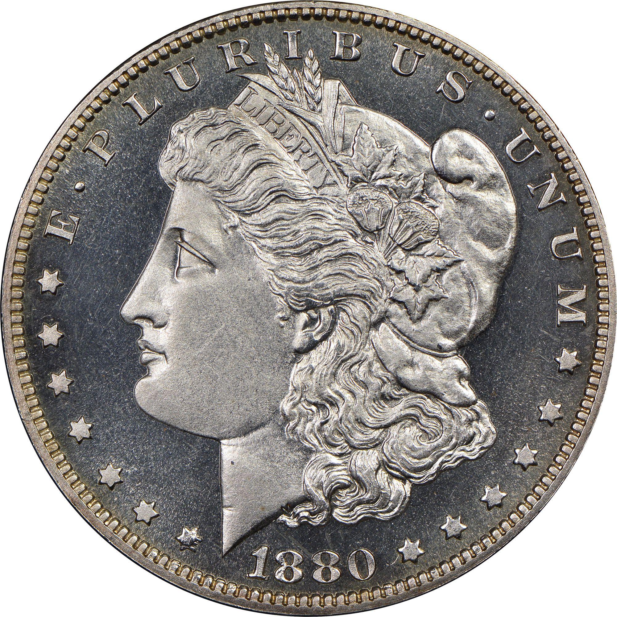 1880 S 1 Pf Https Www Ngccoin Com Coin Explorer Morgan Dollars 1878 1921 Pscid 49 1880 S1 Pf Coinid 17315 Morgan Dollars Coins Old Coins