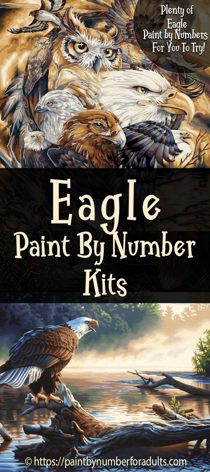Are you looking for Eagle Paint By Number Kits? You'll