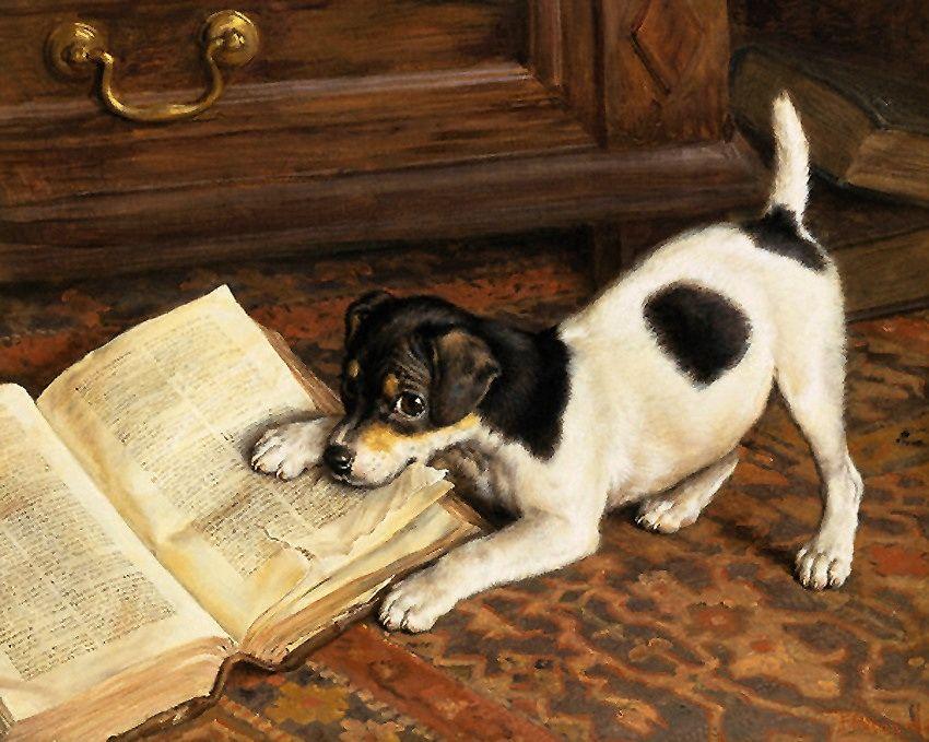 картинка собаки с письмом