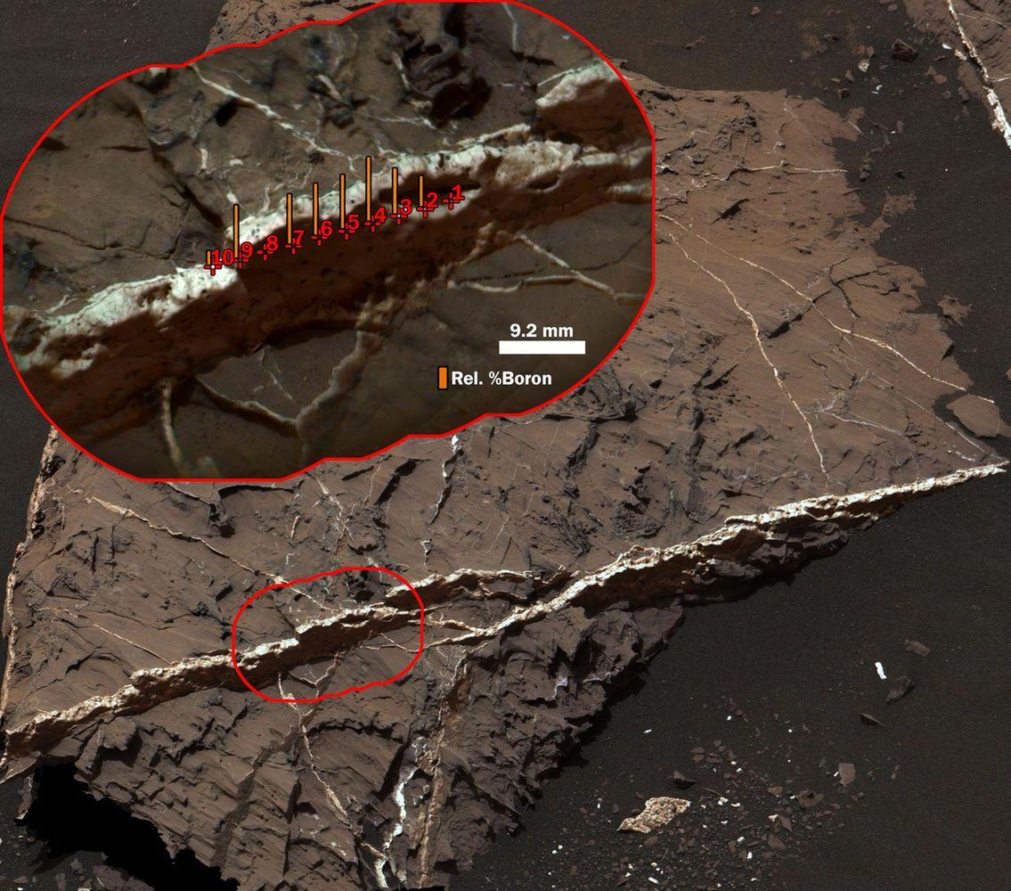Long Window for Life on Mars Hundreds of Millions of