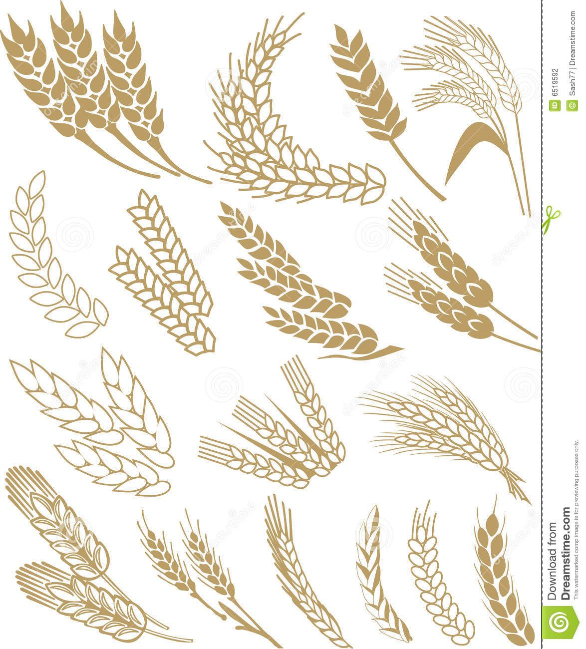 Wheat Vector - Download From Over 56 Million High Quality ...