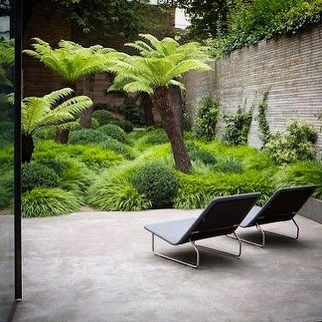 "Gardendesign truly, madly, deeply in love with this ""unruly jungle"" garden"