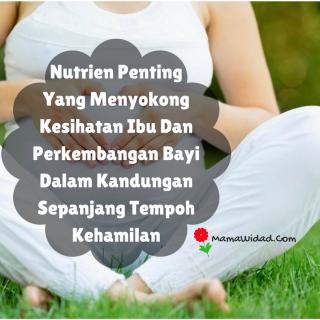 Supplement untuk ibu hamil penting untuk membantu ibu