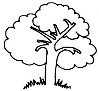 رسم شجرة تعليم الرسم للاطفال رسومات اطفال سهله للتلوين Easy Drawings Drawing For Kids Drawings
