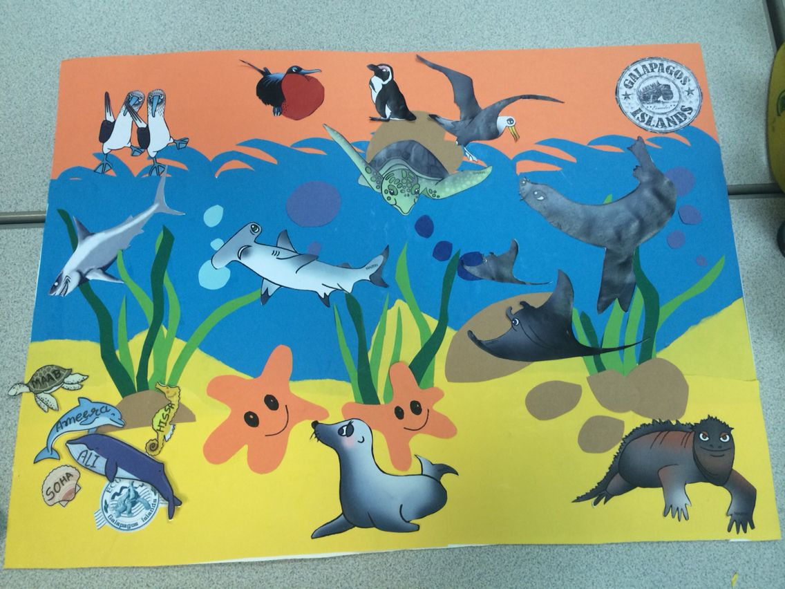 My Galapagos Island Reward Chart The Children S Names Are