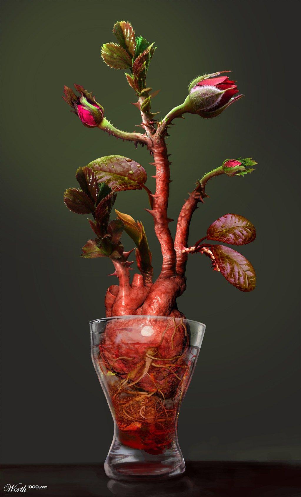 Heart of a Rose | Corazones | Pinterest | Mi corazón, Anatomía y ...