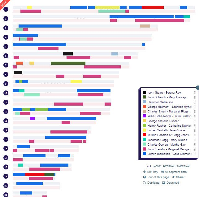 DNA Painter chromosome map | genealogy | Dna, Gene mapping, Ancestry on