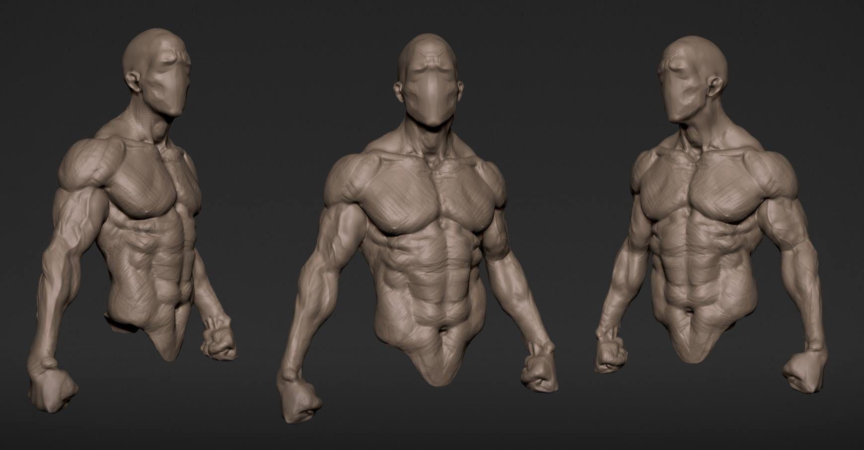 automob 3d anatomy tutorial - HD1740×906