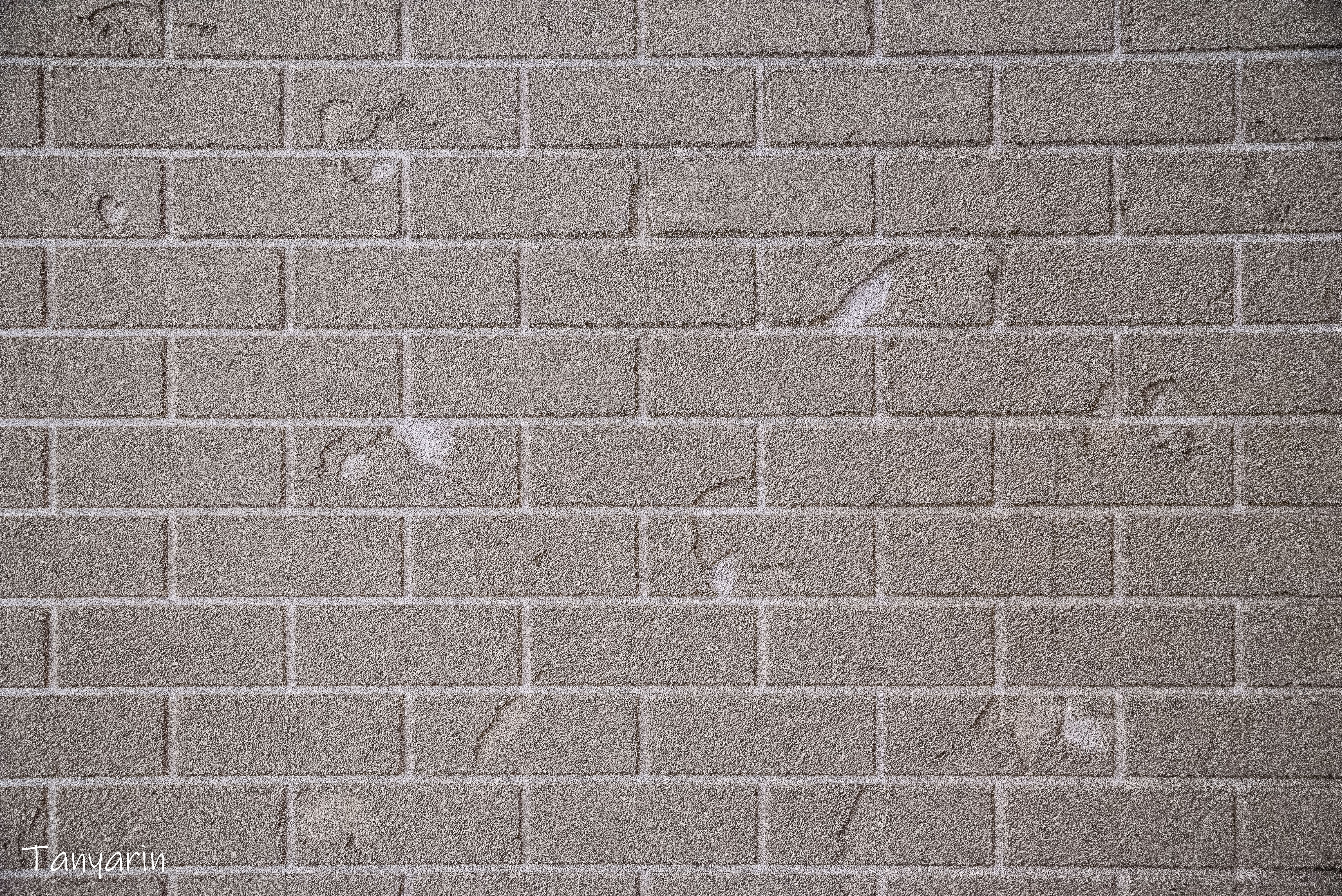 Brick Stucco On Wall By Tanyarin