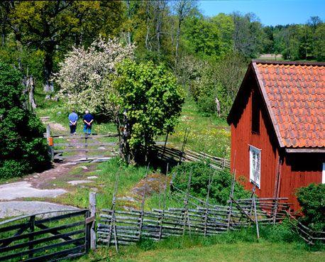ängsö Island Sweden Is An Unusual National Park Preserving As It