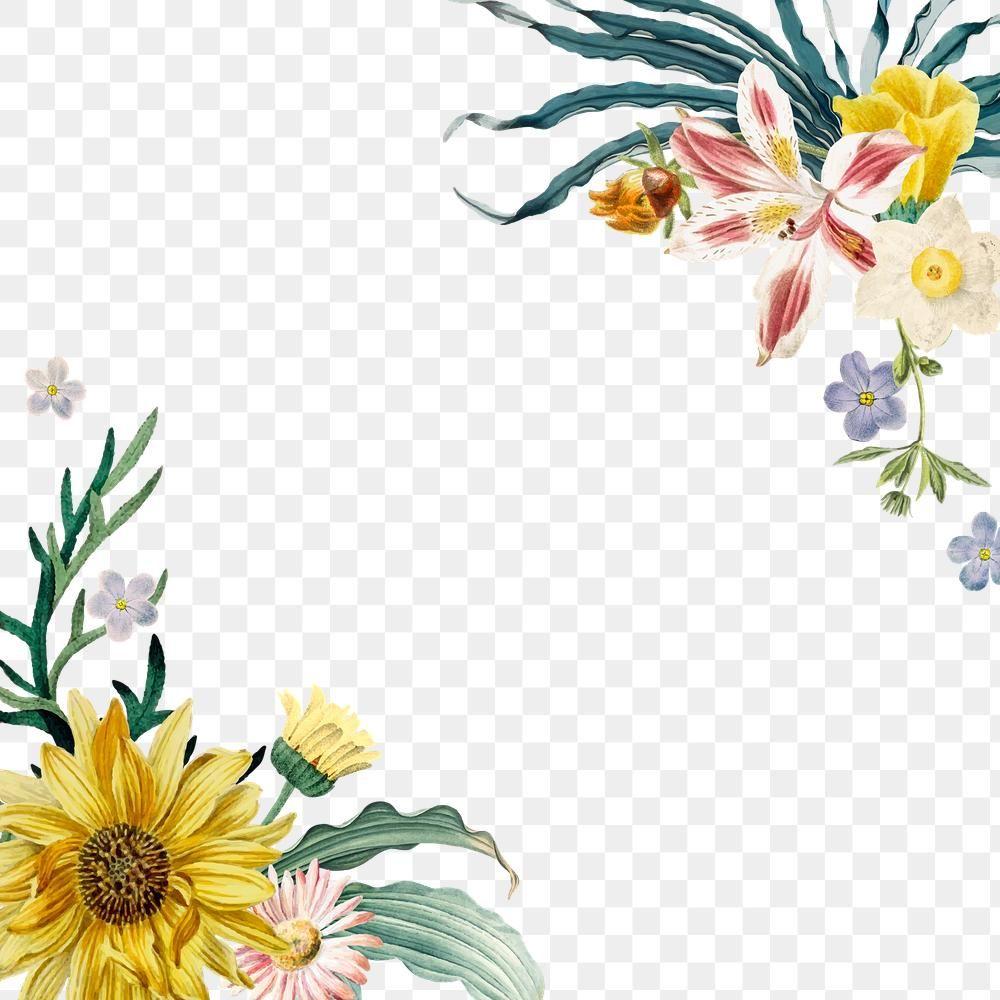 Spring Floral Png Border Colorful Free Image By Rawpixel Com Sasi Spring Illustration Flower Illustration Spring Floral