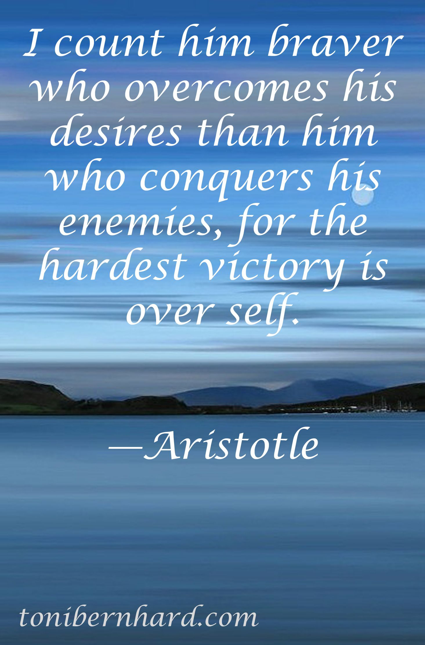 Aristotle especially when the self needs to conquer desire for chocolate  Plato Quotes, Words Quotes