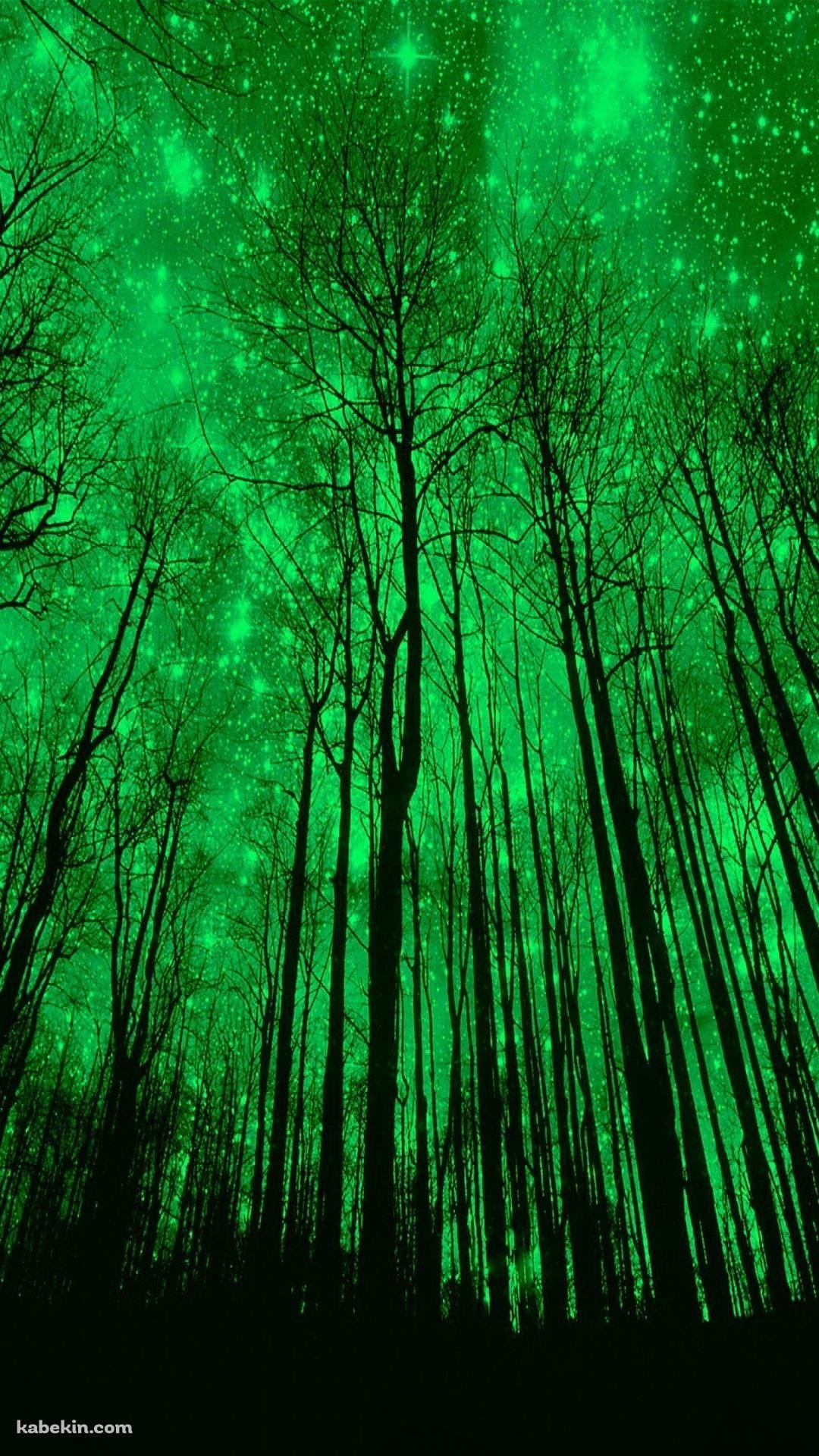 緑に輝くの森のiphone壁紙 Iphonex スマホ壁紙 待受画像ギャラリー 森の壁紙 緑 壁紙 ファンタジーな風景