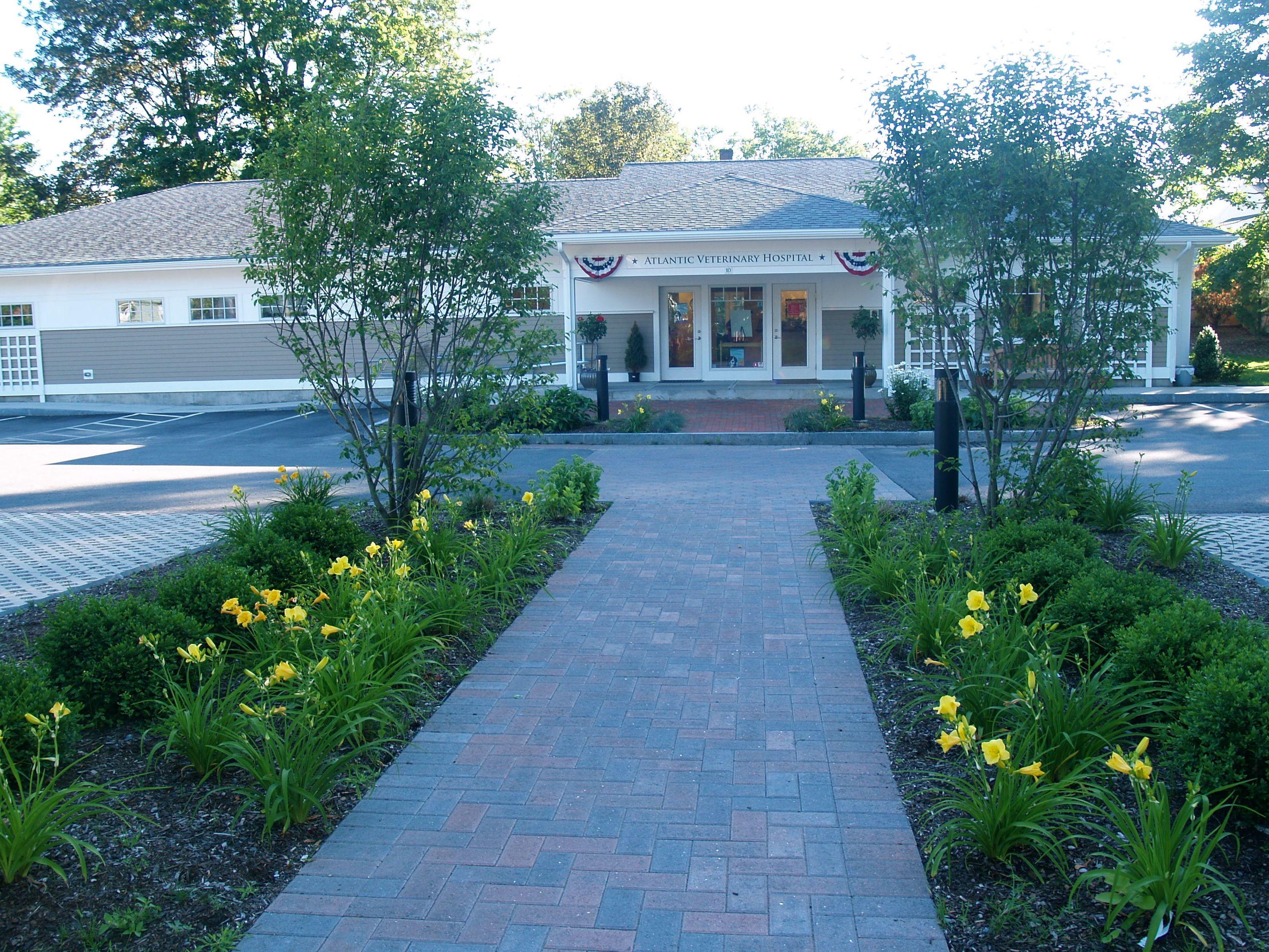 Atlantic Veterinary Hospital Commercial landscaping