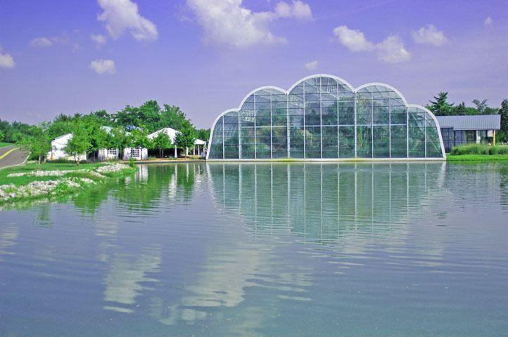 b68777864cbcb6b88b8e013c84b9f98b - St Louis Botanical Gardens Butterfly House
