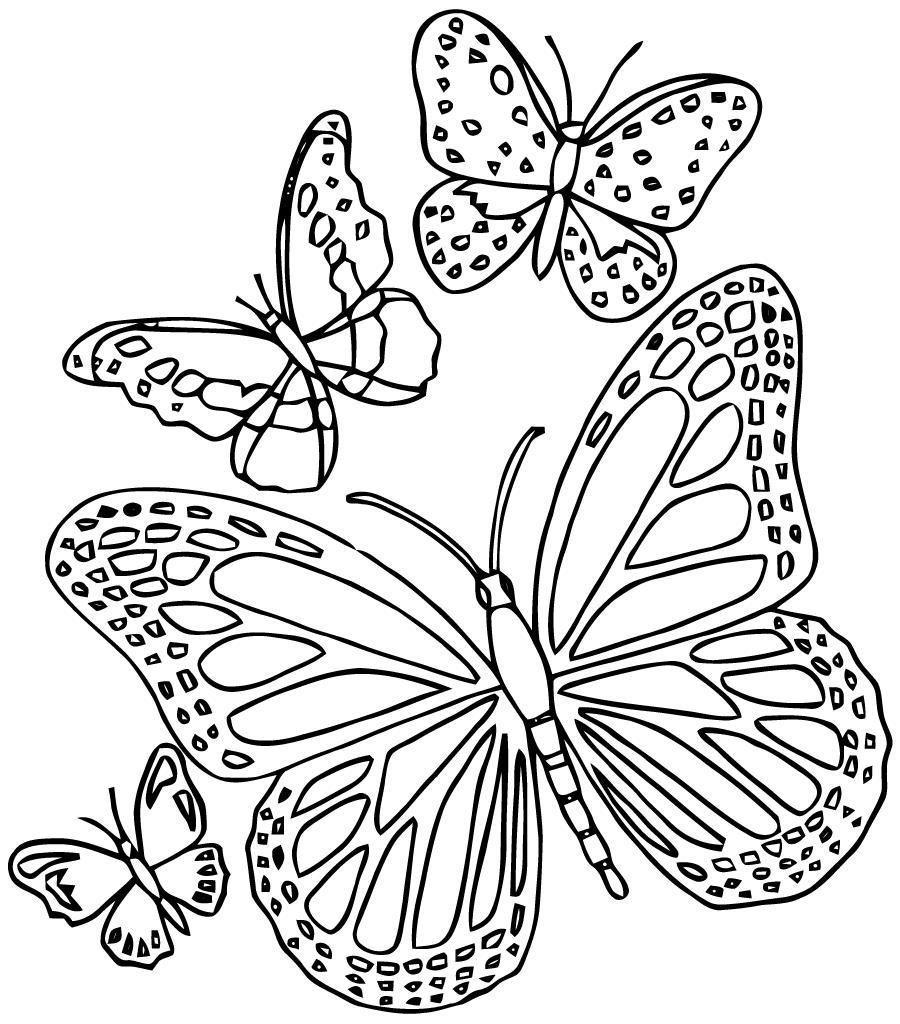 8 Coloriage A Imprimer Un Papillon Butterfly Coloring Page Paper Quilling Patterns Coloring Pages [ 1024 x 900 Pixel ]