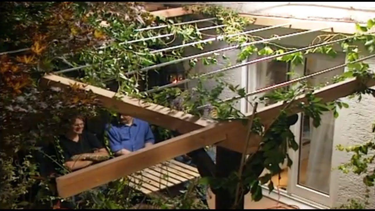 Sichtschutz im Garten mit Rankpflanzen ToolTown Garten