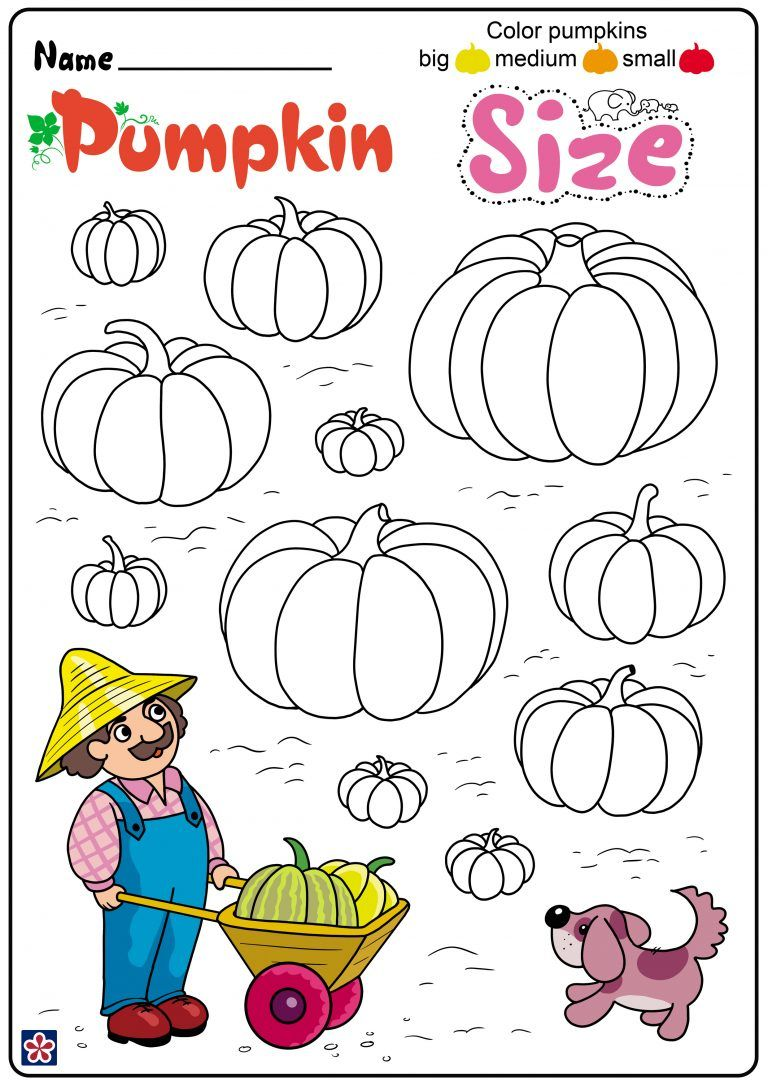 Free Printables of the Parts and Lifecycle of a Pumpkin
