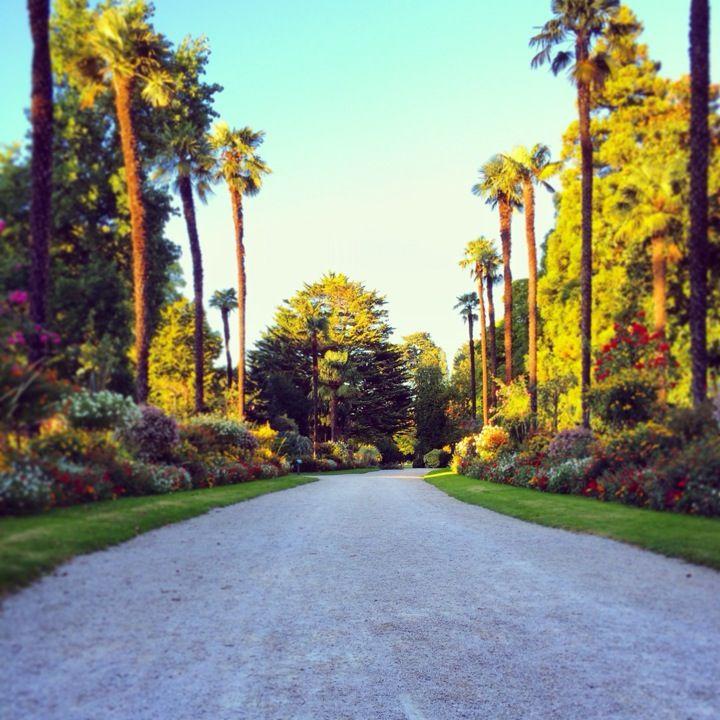 Jardin Massey Country Roads Zaragoza Sidewalk