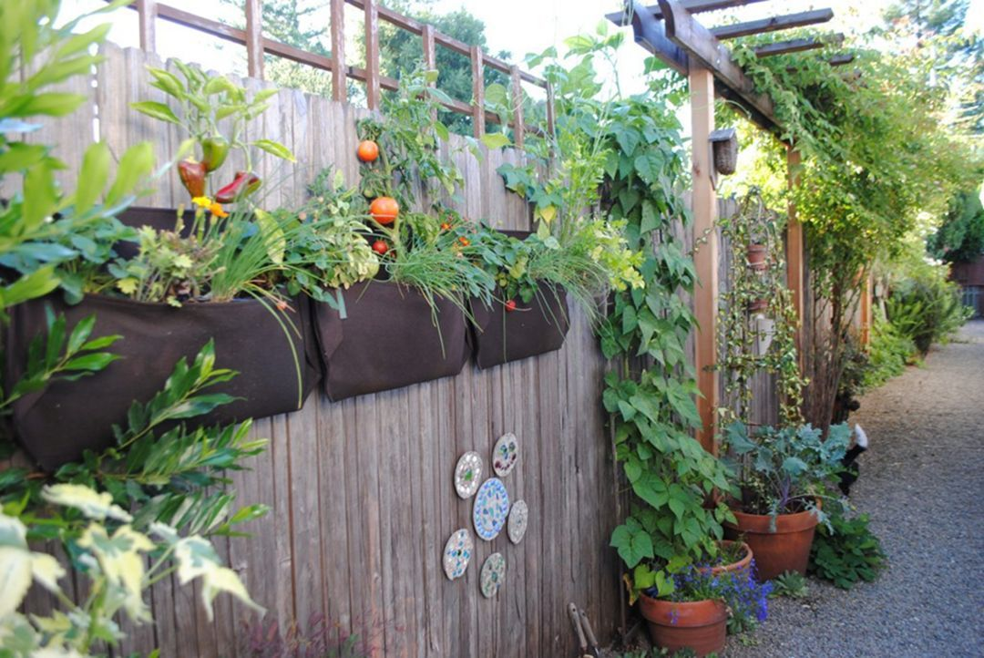 11 Creative Vegetable Garden Design