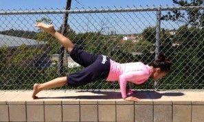 fourlimbed staff pose  yoga courses yoga