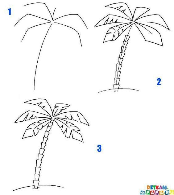 Palm Tree Tutorial Palm Tree Drawing Tree Drawing Flower Drawing