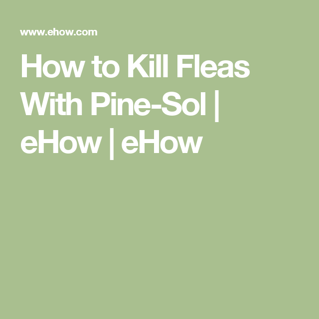 Pin On Frugal Is A Must