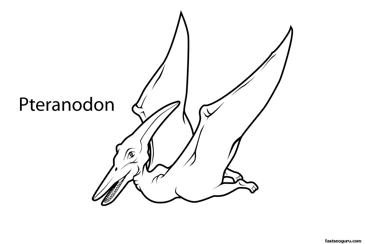 Printable Dinosaur Pteranodon Coloring Page Pages