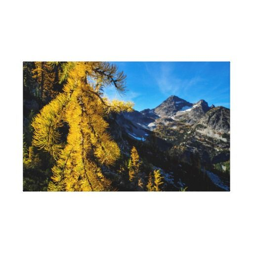 Fall Foliage - Maple Pass Loop