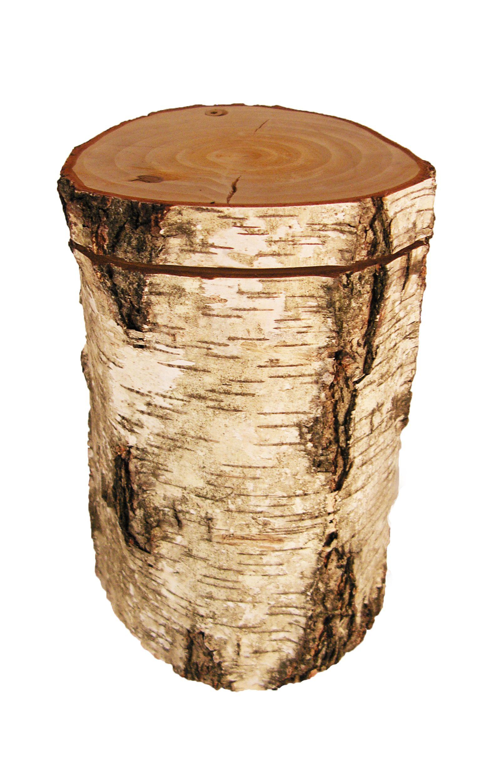 holzurne aus baumstamm birke mementi urnen pinterest holz baum und birke. Black Bedroom Furniture Sets. Home Design Ideas