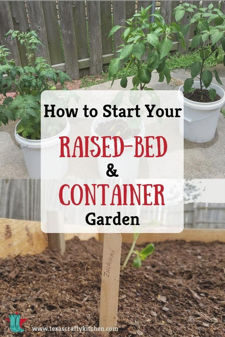 How to Start Your Raised-Bed and Container Garden. Simple ...