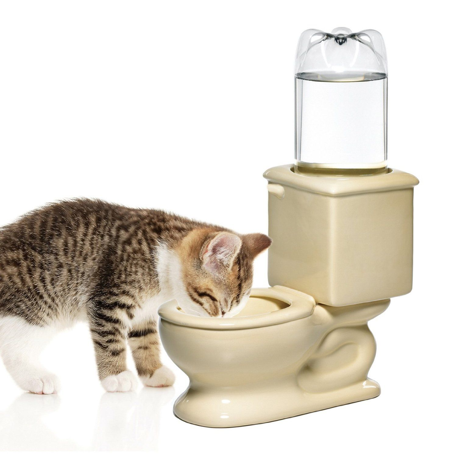 [Feline 101] Kitty Holiday Guide: Cool Gifts for Cats and Cat Lovers | Toilet Bowl Cat Fountain ($30)