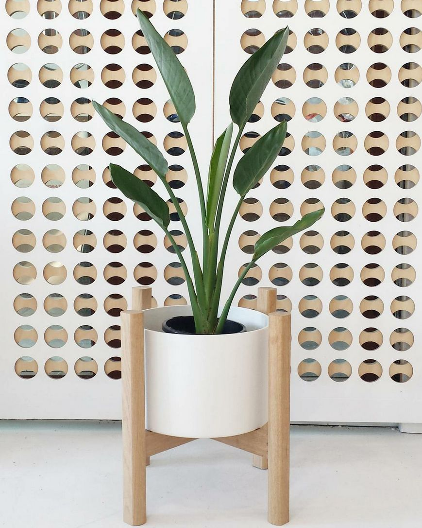 10 Best Planters To Online