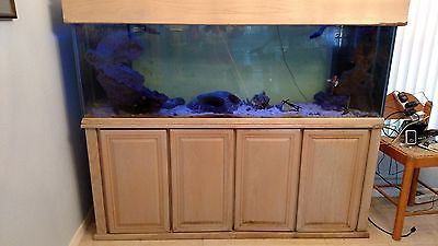 Aquarium Tank W 120 Gallon Aquarium Aquarium Tank Stand