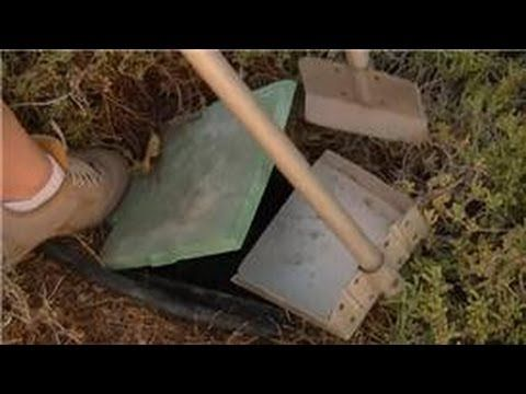 Home Landscaping Tips : How to Compost Dog Waste - YouTube