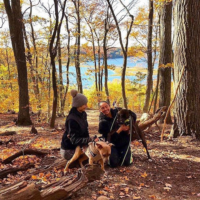 Explore Cold Spring Harbor State Park Cold Spring Harbor Long
