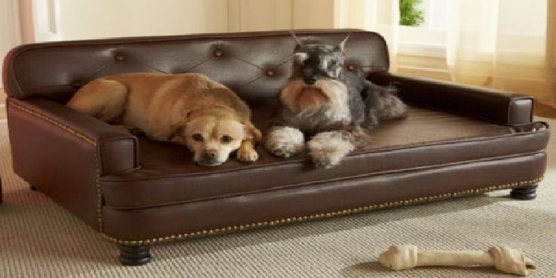 Pin by Sofacouchs on Microfiber Sofa | Cool couches, Dog ...