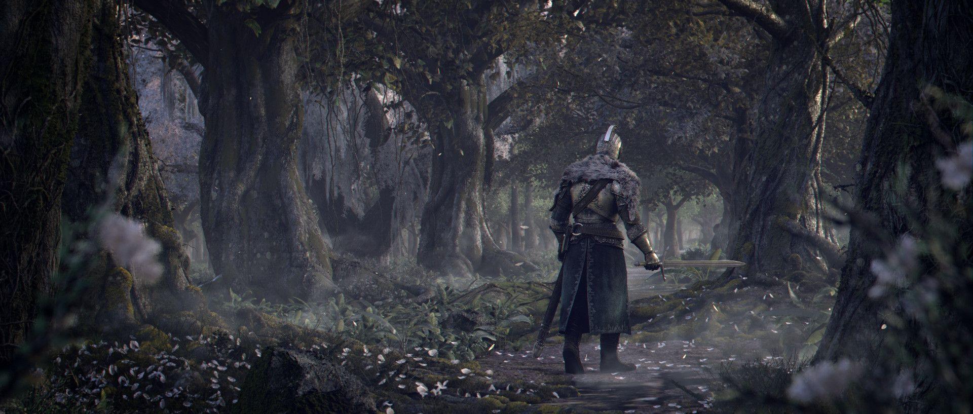 Dark Souls II, Faraam Knight   Dark Souls and Bloodborne