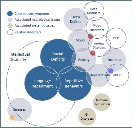 What Is Autism Spectrum Disorder?