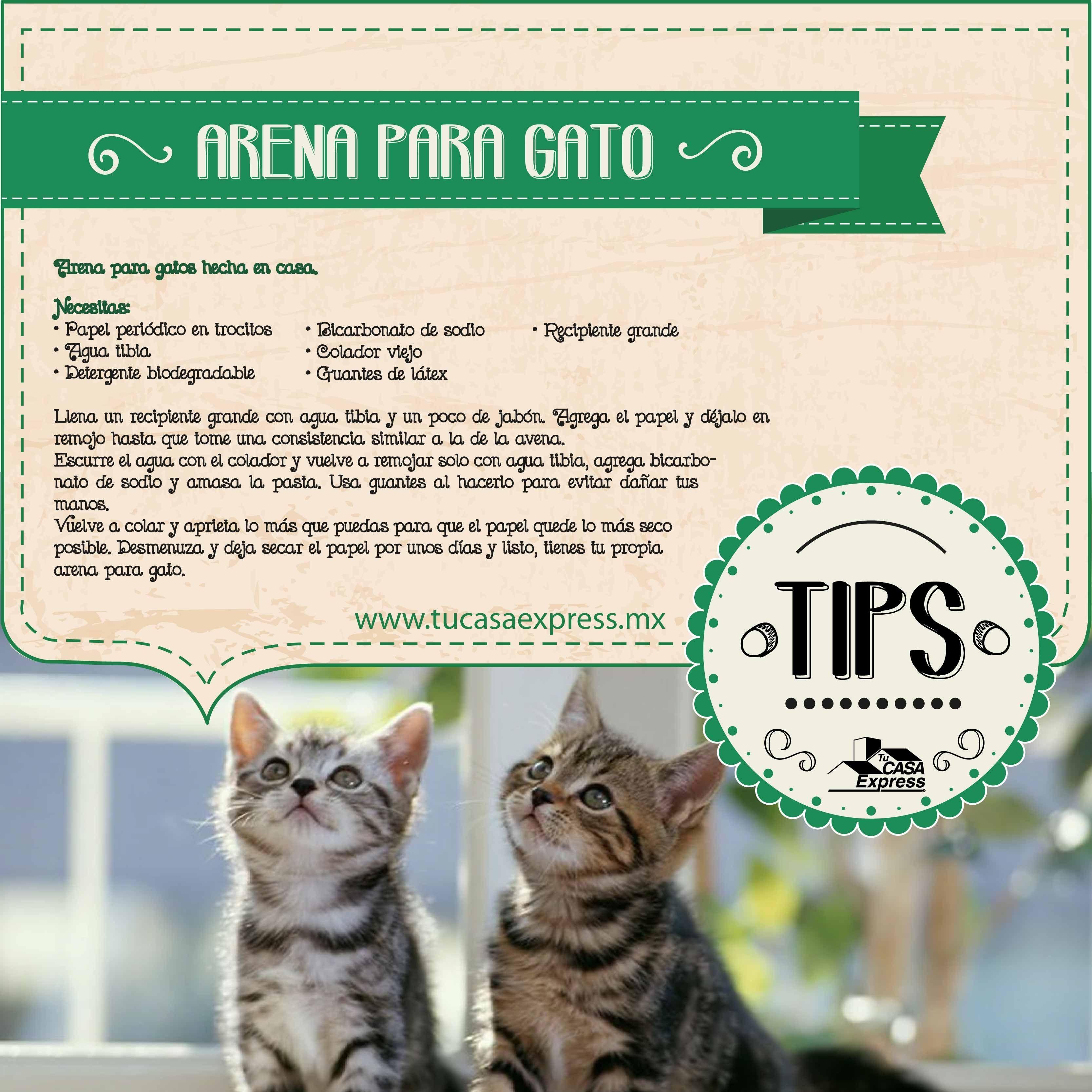 Arena para gatos hecha en casa Tu Casa Express