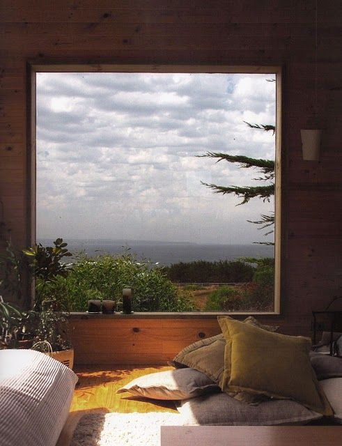 wood and the view