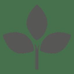 Plant Icon Plant Icon Icon Graphic Image