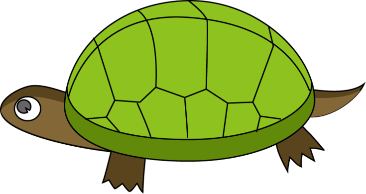 Vector Cartoon Turtle Turtle Png Image And Clipart Cartoon Turtle Clip Art Cartoon