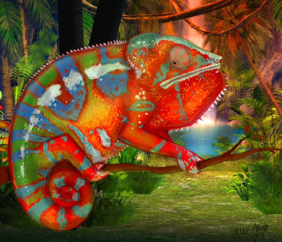 Amazing Colorful Chamilions: Panther Chameleon By Vanlei.deviantart.com On @deviantART