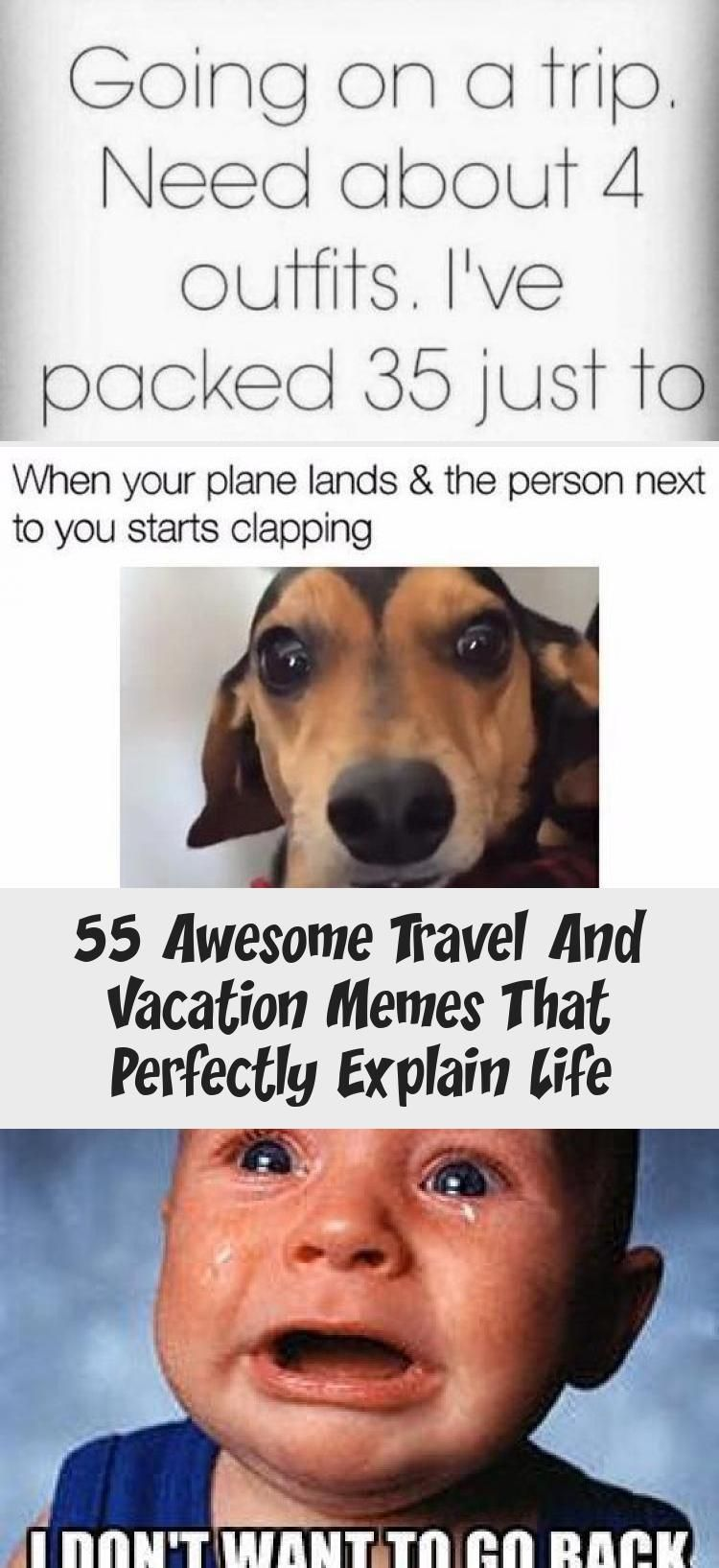 55 Awesome Travel And Vacation Memes That Perfectly Explain Life  Anime 55 hilarious travel memes to inspire wanderlust and adventure  vacation quotes humor memes hilario...