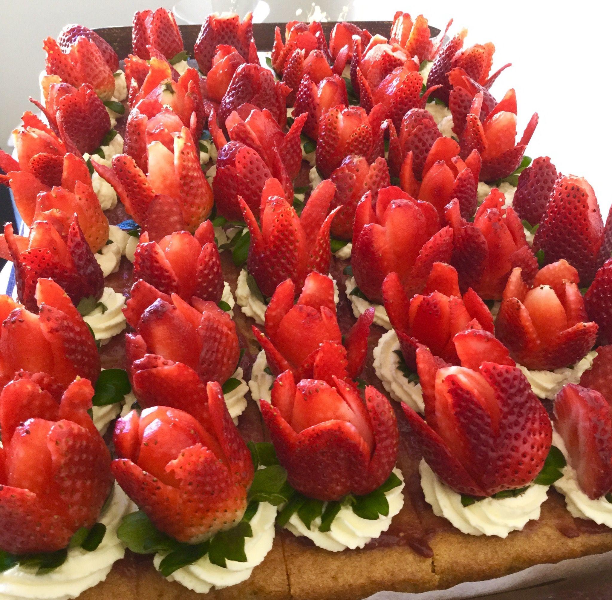 My strawberries garden. 🍓🍓🍓🍓