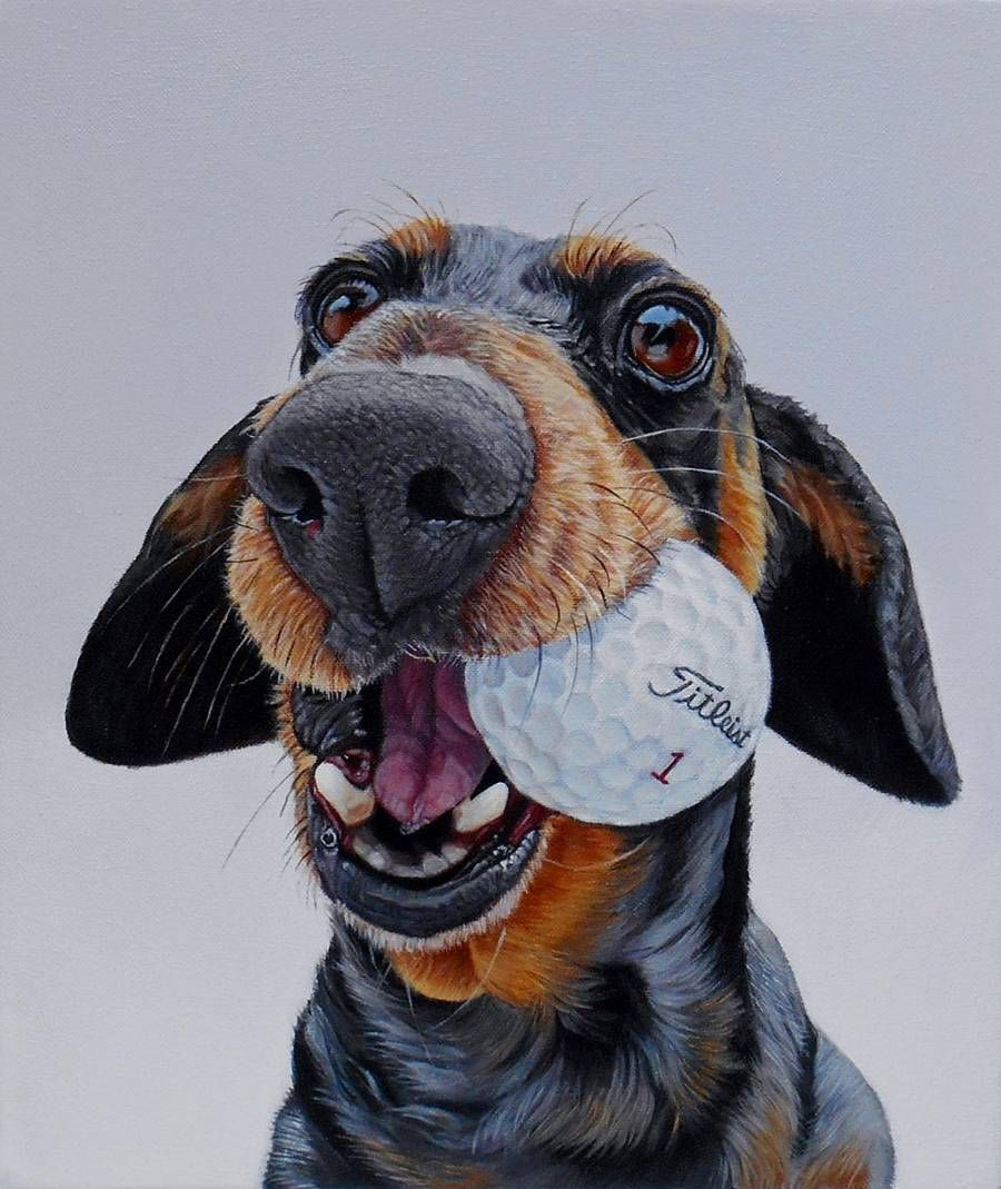 Realistic Funny Dog Portraits in 2020 Dog portraits, Dog